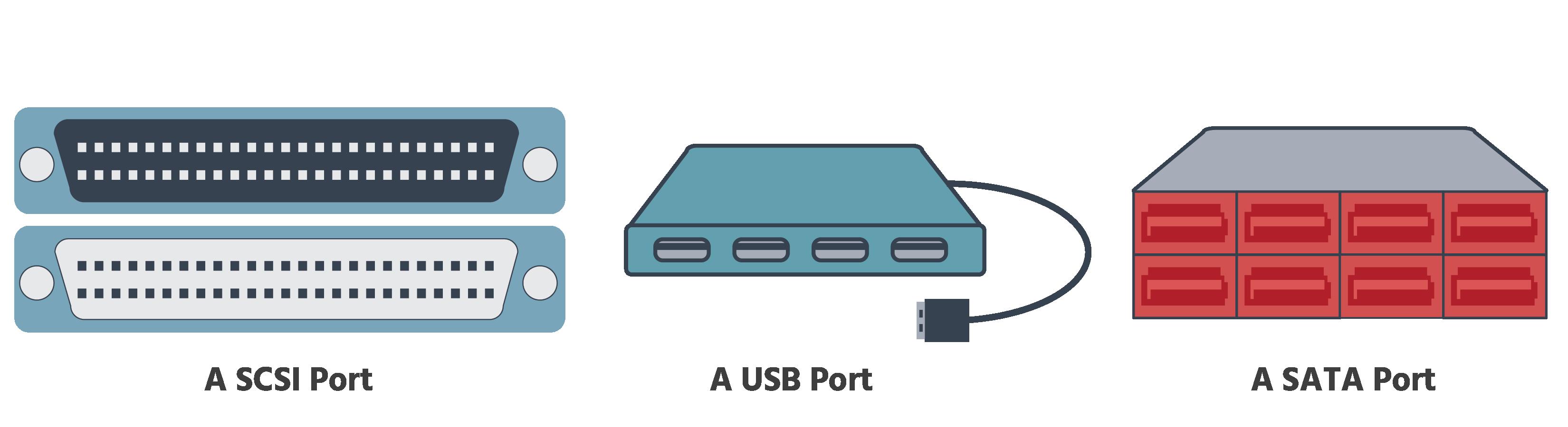 2 SCSI connectors, 4 USB ports and a USB connector and 8 SATA ports